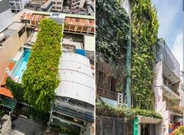 """Ngôi nhà Sài Gòn phủ đầy cây xanh nhờ """"tấm màn che xanh"""""""